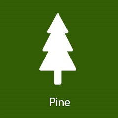 pine-flavor