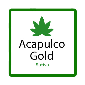 Best Marijuana for Chronic Pain - Acapulco Gold