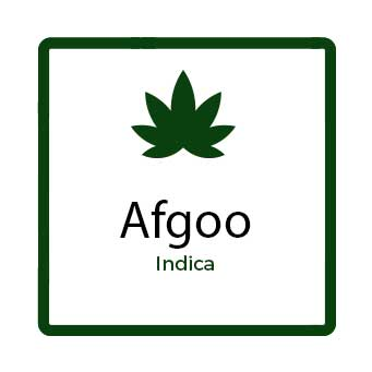 Cannabis for Chronic Pain in Canada - Afgoo