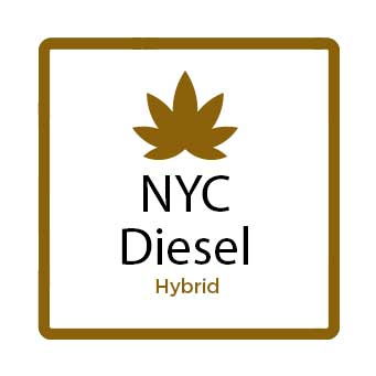 Medical Marijuana for Stress - NYC Diesel