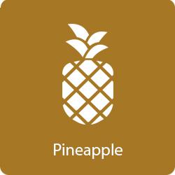 pineapple-flavor