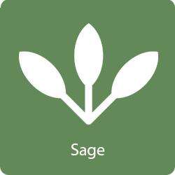 sage-flavor