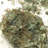 Agent Orange Weed