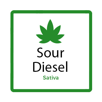 Best Weed for Fatigue - Sour Diesel