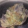 Black Diesel Weed