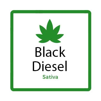 Best Marijuana for Stress - Black Diesel