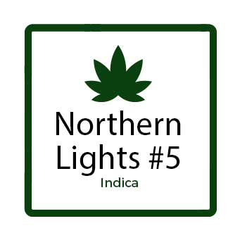 Northern Lights #5 - Indica