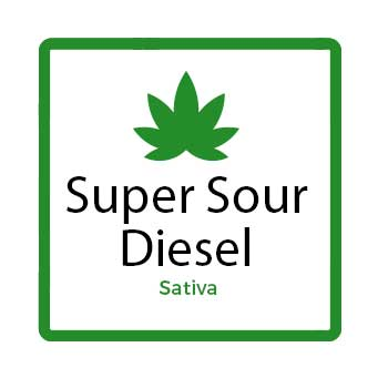 Best Weed for Fatigue - Super Sour Diesel