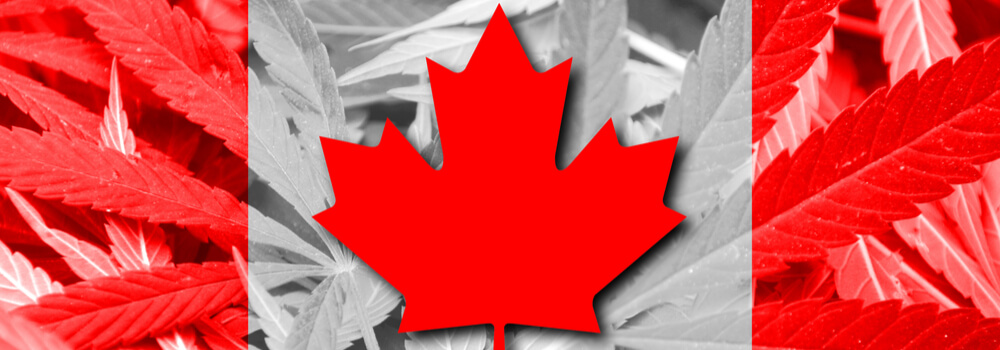Details of Buying Weed in Canada 2018
