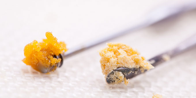 Difference between shatter and budder