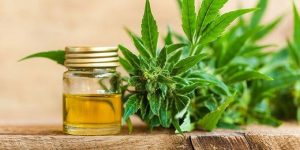 What is Cannabidiol (CBD)? [Information & Guidance]