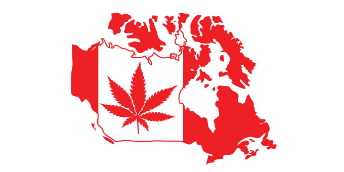 the debate about the legalization of cannabis in canada Canada quebec battles federal law and facts en route to legalization canada cannabis in a distinct society: quebec wrangles legalization canada the fight for fair access to medical marijuana in.