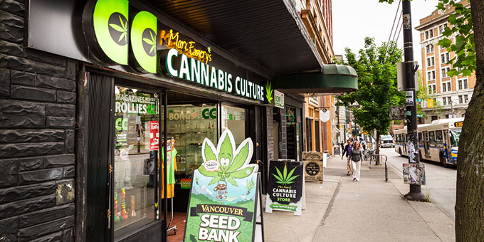 Marc Emery's Cannabis Culture