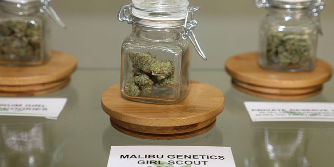 Online Marijuana Dispensaries