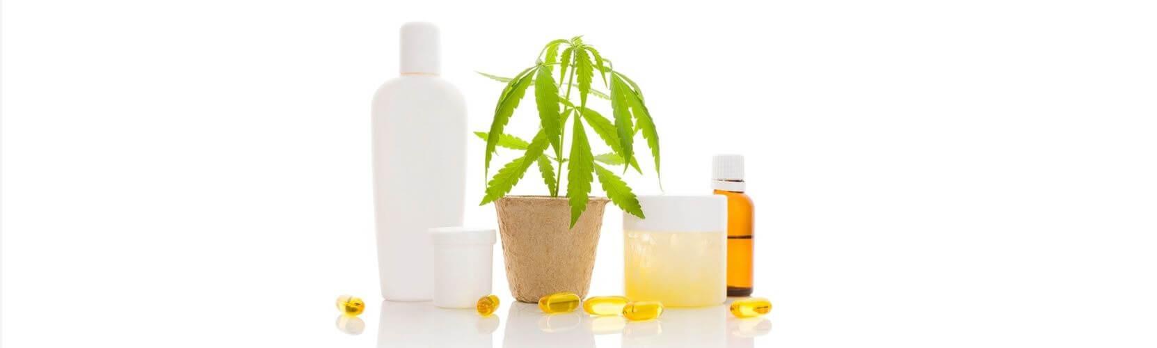 cannabis shampoo