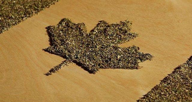 Canada Legalization timeline