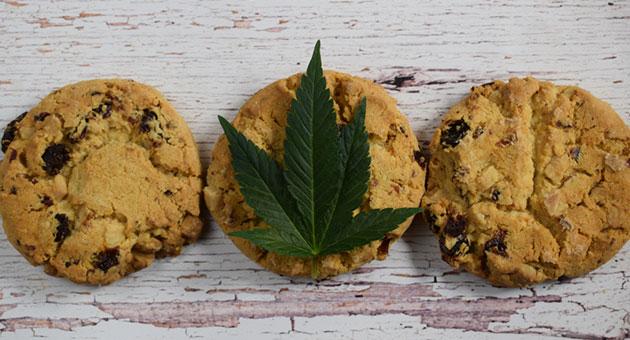 edible-weed