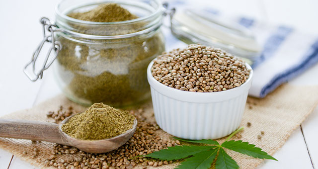 hemp protein pros and cons