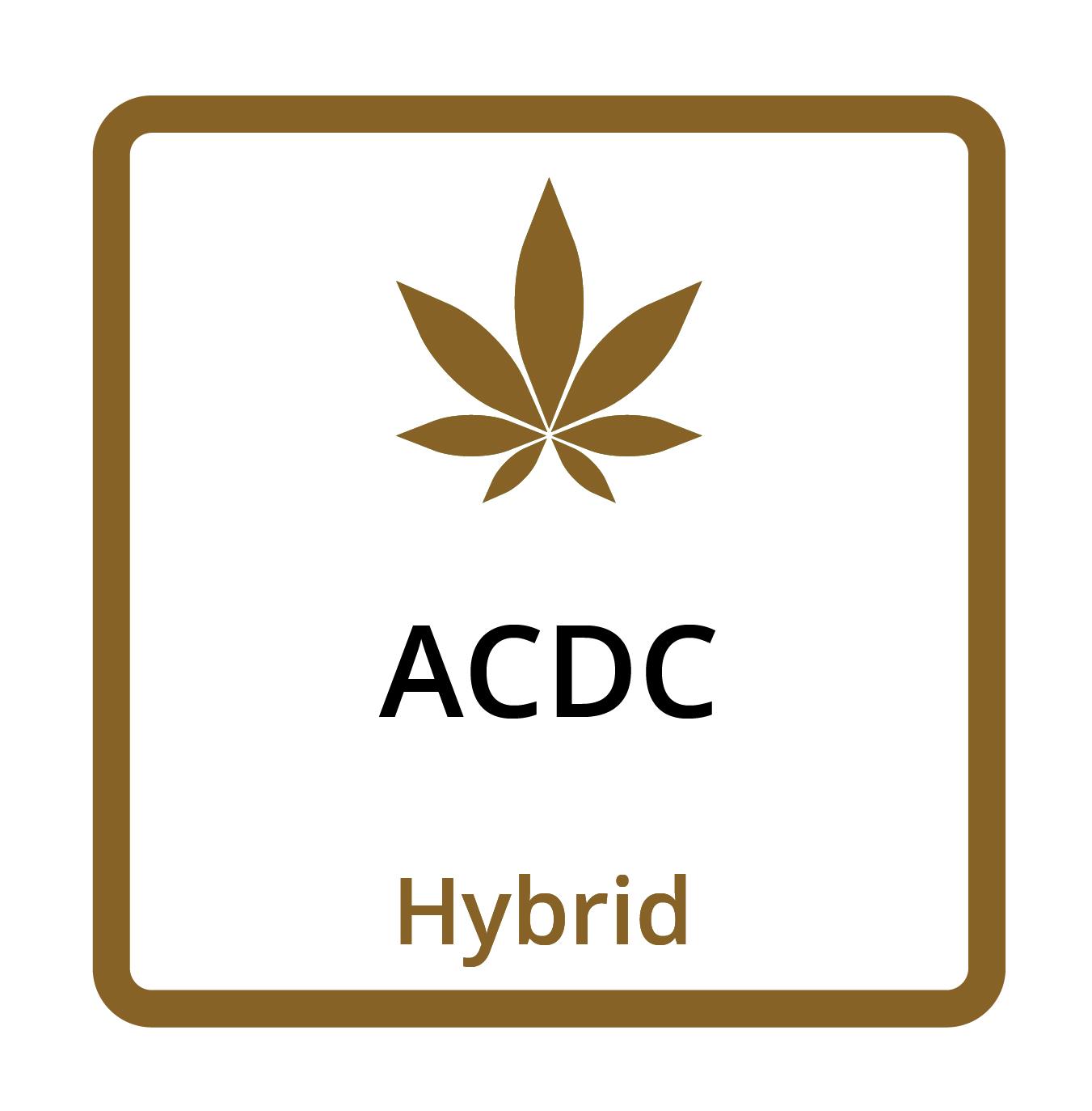 ACDC (Hybrid)