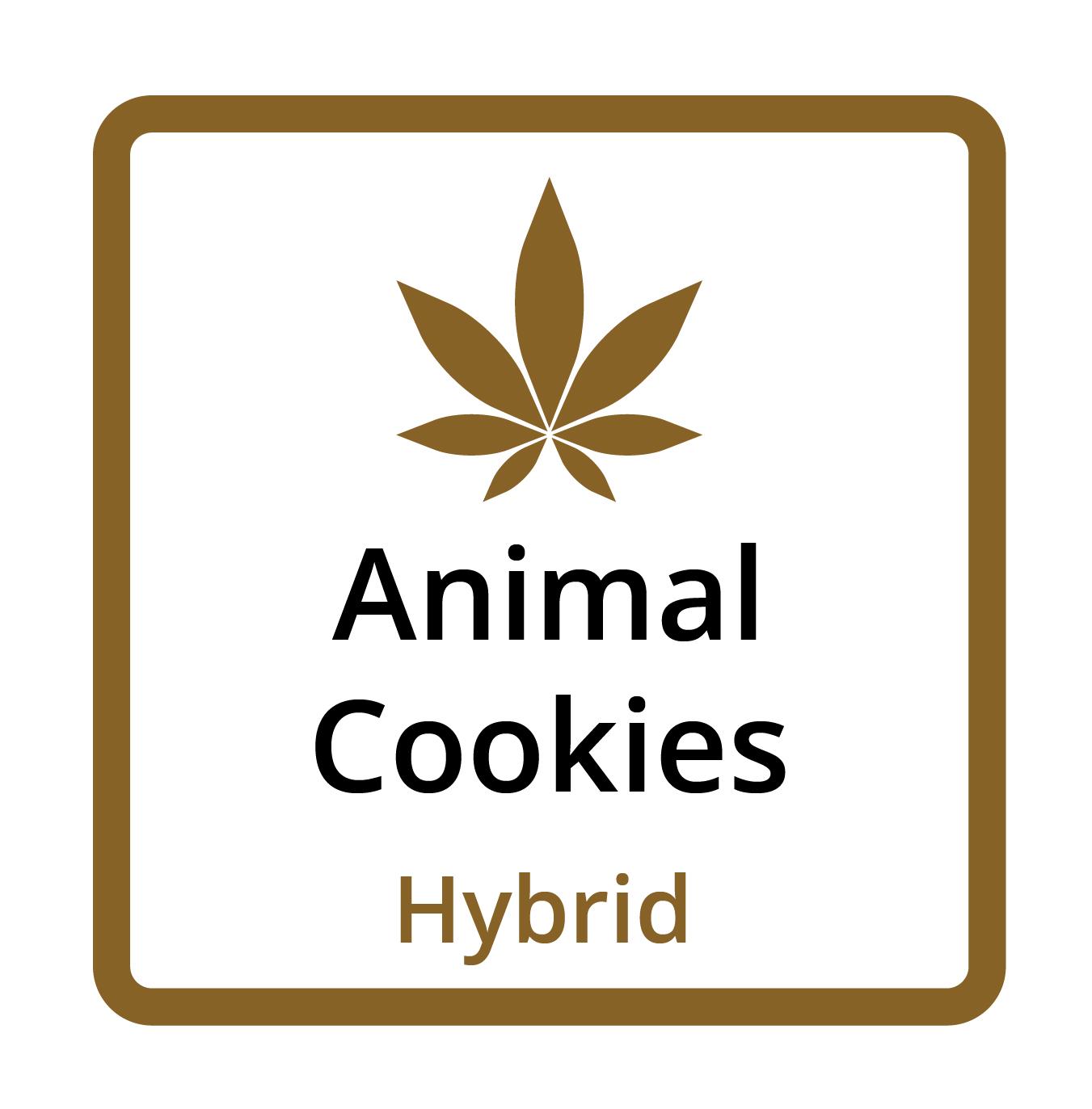 Animal Cookies (Hybrid)