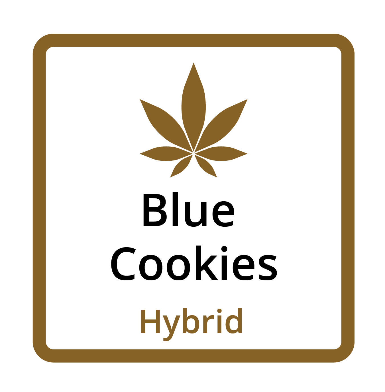 Blue Cookies (Hybrid)
