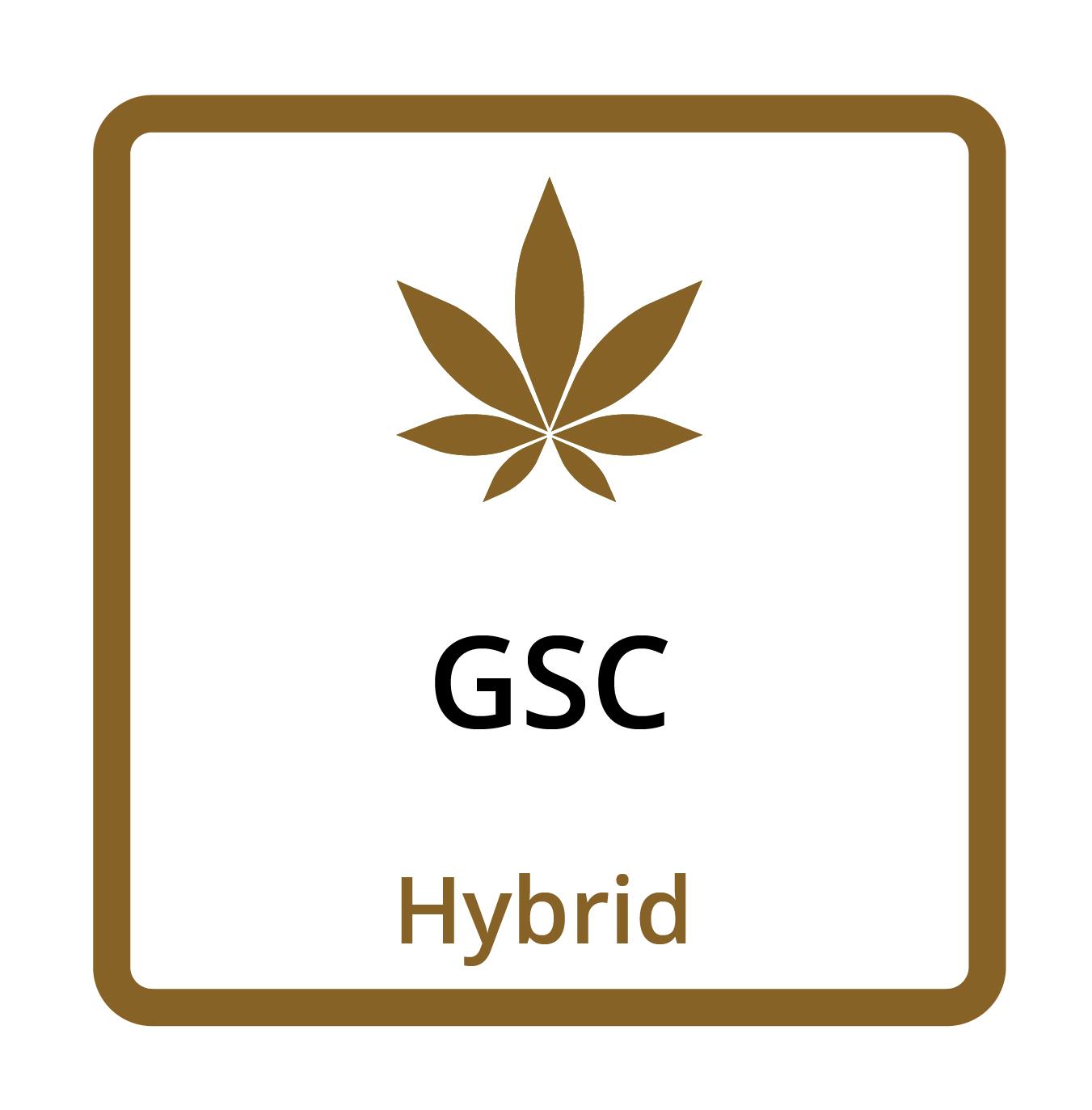 GSC (Hybrid)