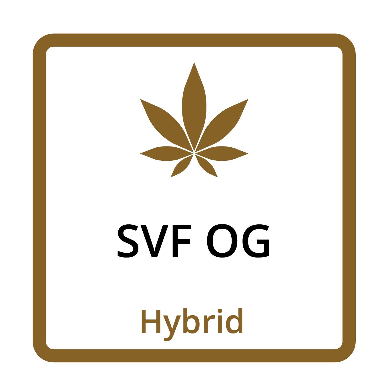 SFV OG (Hybrid)