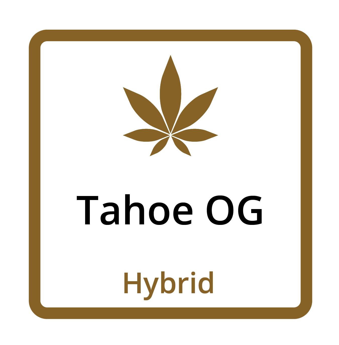 Tahoe OG (Hybrid)