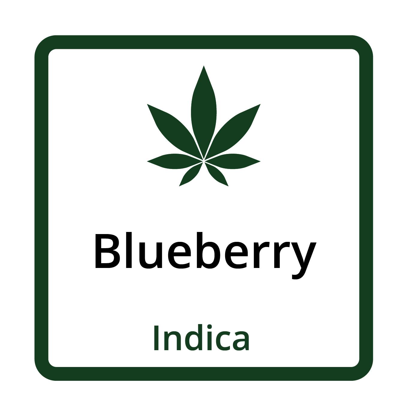 Blueberry (Indica)