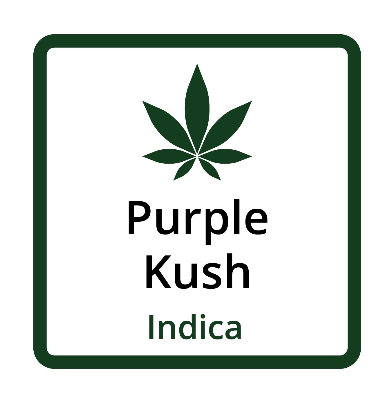 Purple Kush (Indica)