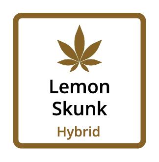 Lemon Skunk (Hybrid)