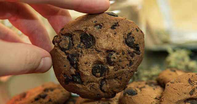 Easy Recipe for CBD Chocolate Chip Cookies