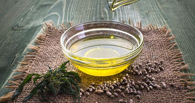 CBD olive oil extraction